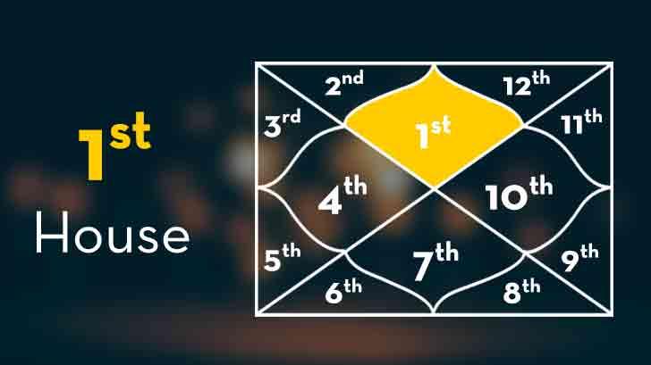 Vedic Astrology Ketu House Significance