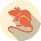 Rat Chinese Horoscope 2019