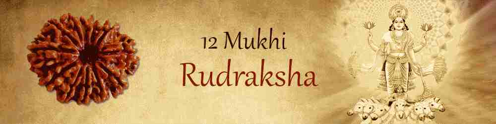 12 Mukhi Rudraksha: Remedy For All Your Troubles