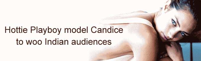 Hottie Playboy model Candice to woo Indian audiences