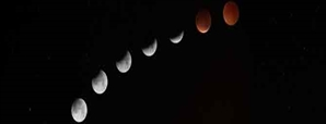 Lunar Eclipse - January's Super Blood Wolf Moon